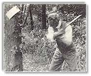 The picture is dulled by age, but the action is lively as Henry Ford swings from the left on a tree destined to provide fuel for the vagabonds' campfire.
